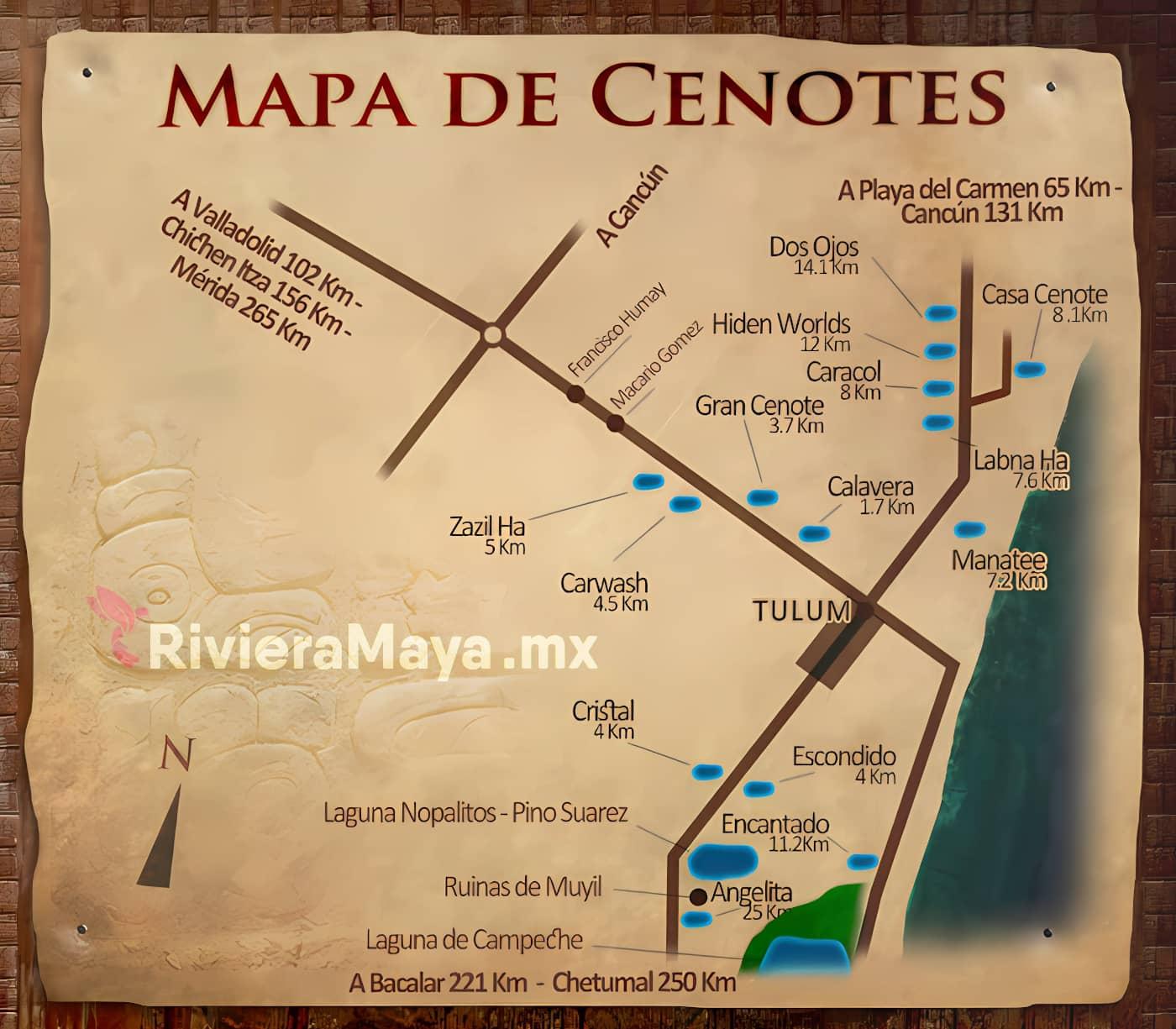Cenotes around Tulum. Cenotes alrededor de Tulum.