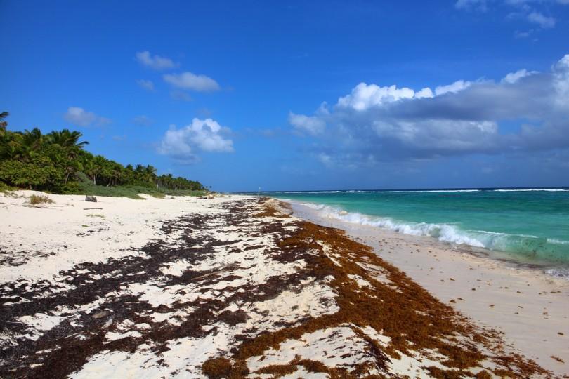 Playa de Chmuyil. Fotografía de Juliane Schultz; Licencia Creative Commons.
