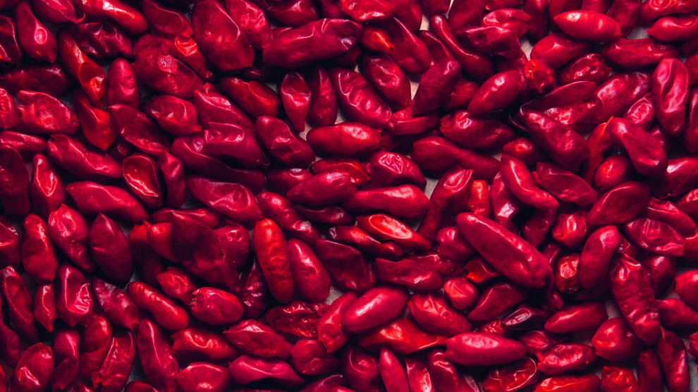 piquin-chiles-mexico