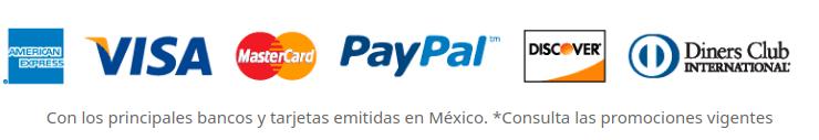 Logos de las formas de pago aceptadas.